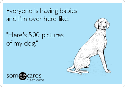 I love my dog someecards