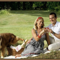 Good picnic featured image